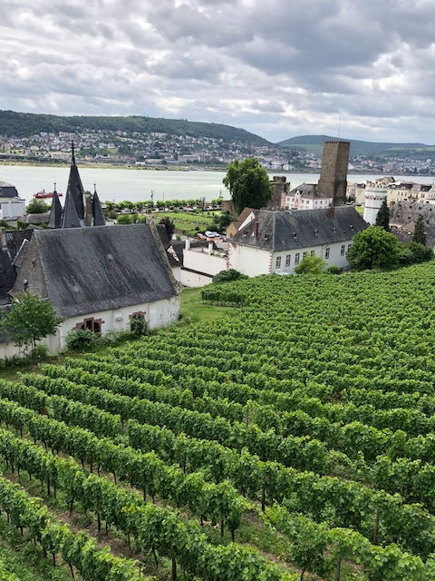 June 22 Rudesheim